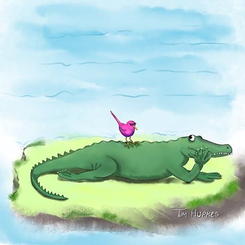Crocodile & Bird
