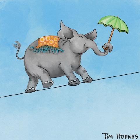 Elephant walking a tightrope