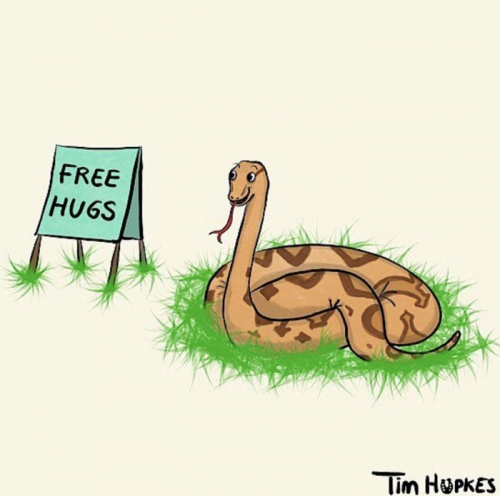 Free hugs: boa constrictor offering free hugs